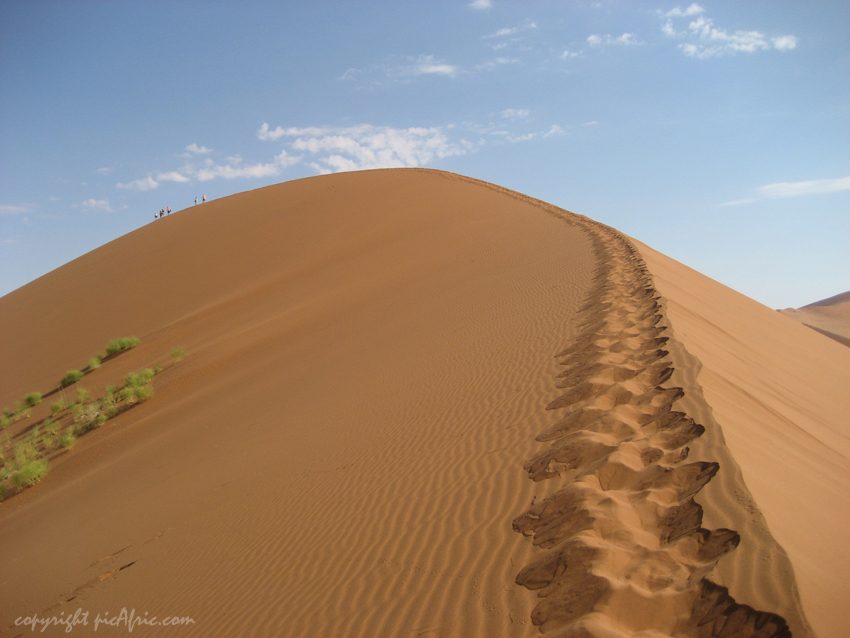 Dune at Sossusvlei in Namibia